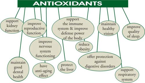Alcohol and Its Antioxidant Effects